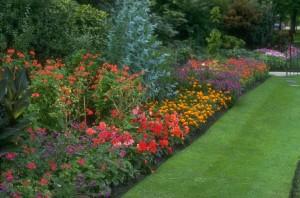 gardening Woking